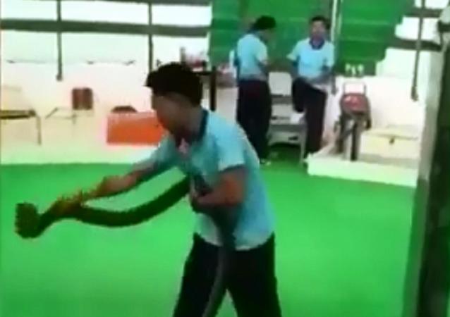 مدرب أفاعي يتعرض للدغة أفعى