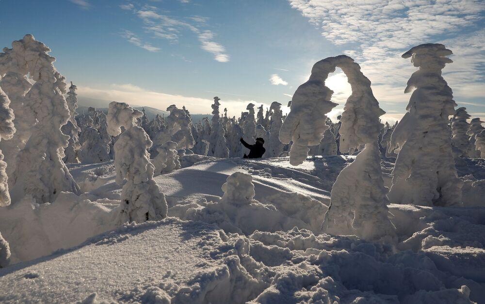 فصل الشتاء حول العالم - بولندا، 7 يناير/ كانون الثاني 2019