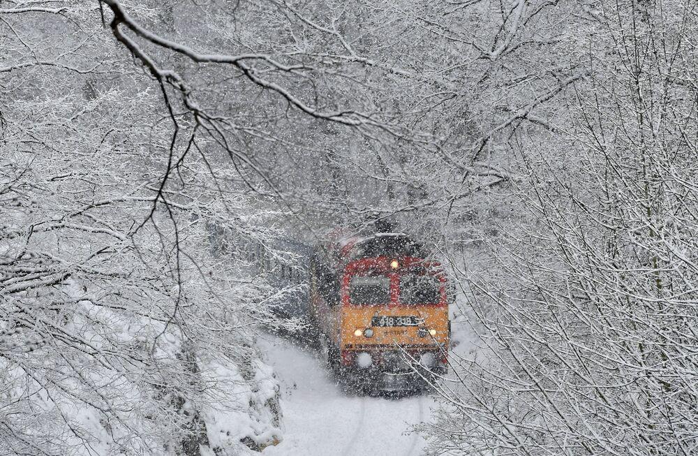 فصل الشتاء حول العالم - المجر، 8 يناير/ كانون الثاني 2019