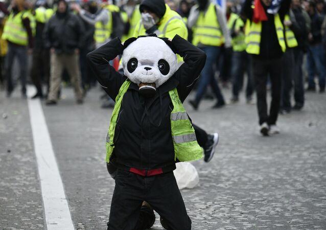 استمرار احتجاجات السترات الصفراء  في باريس، يناير/ كانون الثاني 2019