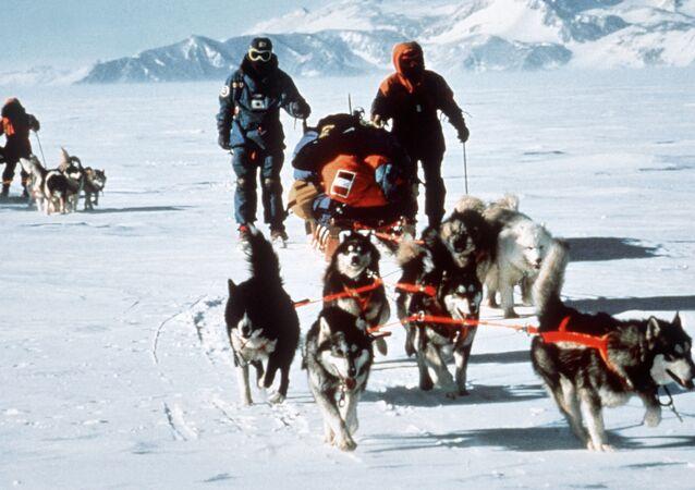 المشاركون في البعثة الدولية العابرة لأنتاركتيكا إلى القطب الجنوبي، عام 1990