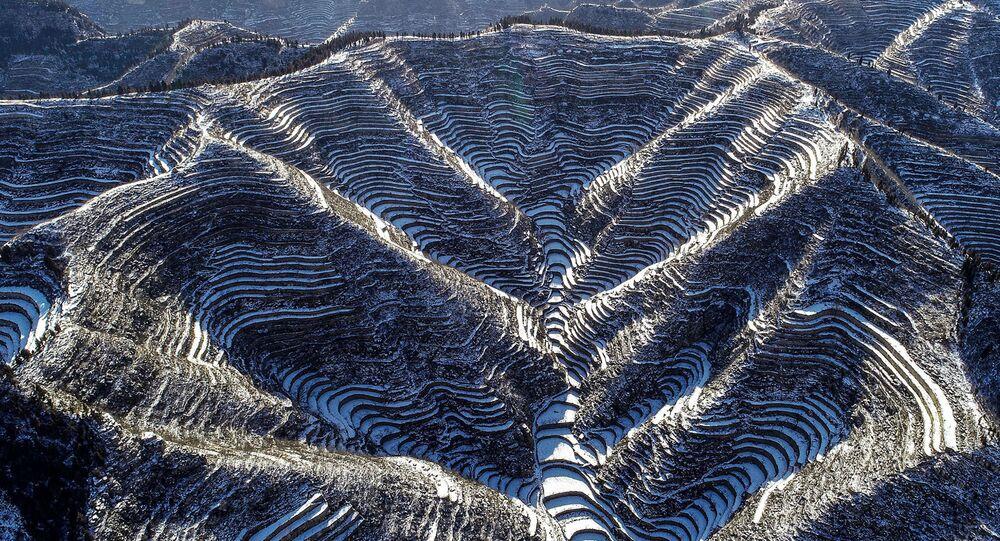 منظر جوي لحقول الأرز المغطاة بالثلوج في هاندان بمقاطعة هيبي بشمال الصين 28 ديسمبر/ كانون الأول 2018