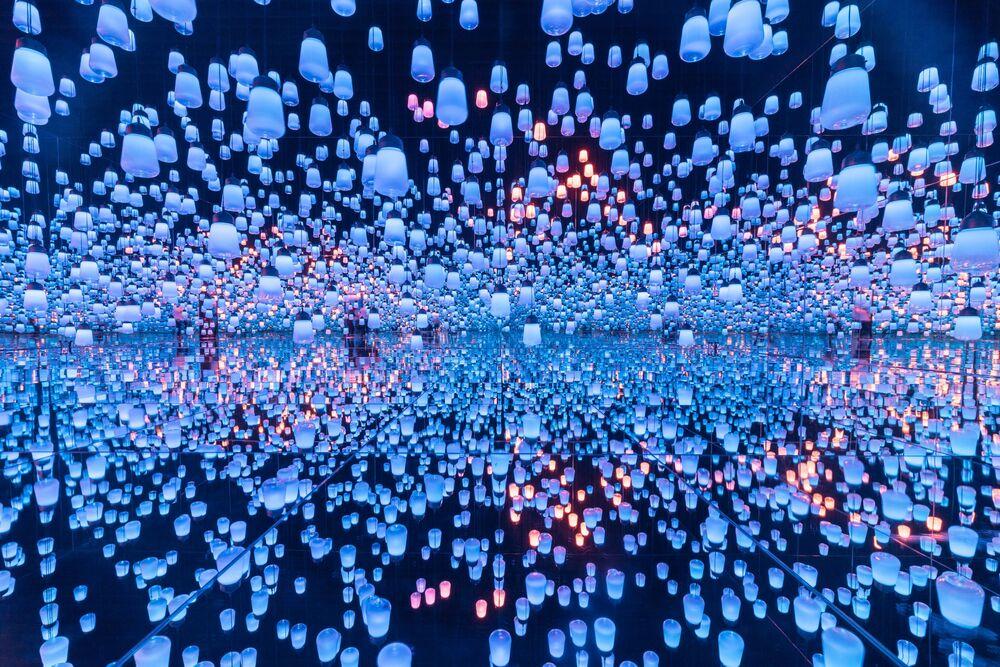 صورة غابة من مصابيح الإنارة، للمصور يوكيهيتو أونو من اليابان