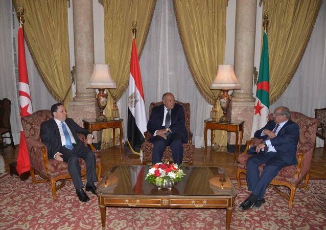 اجتماع وزراء خارجية جوار ليبيا في القاهرة