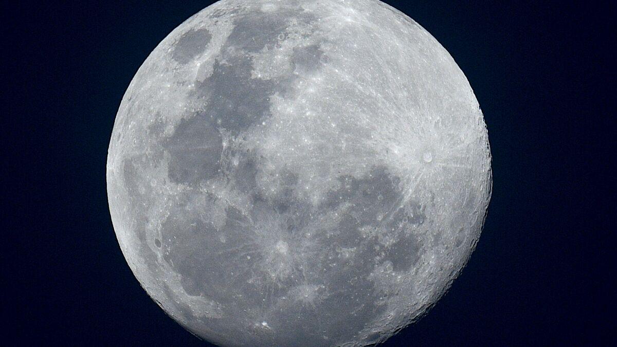 نائب يخبار هيبة الارض اكبر من القمر بكم مرة Comertinsaat Com