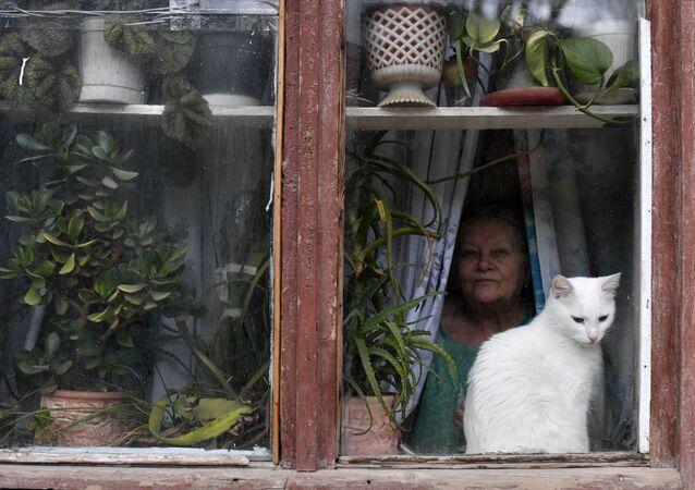 قط على نافذة منزل في بالاكلافا، القرم