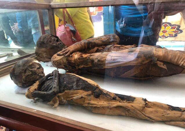الكشف عن مقبرة أثرية في مصر يعود تاريخها إلى العصر البطلمي