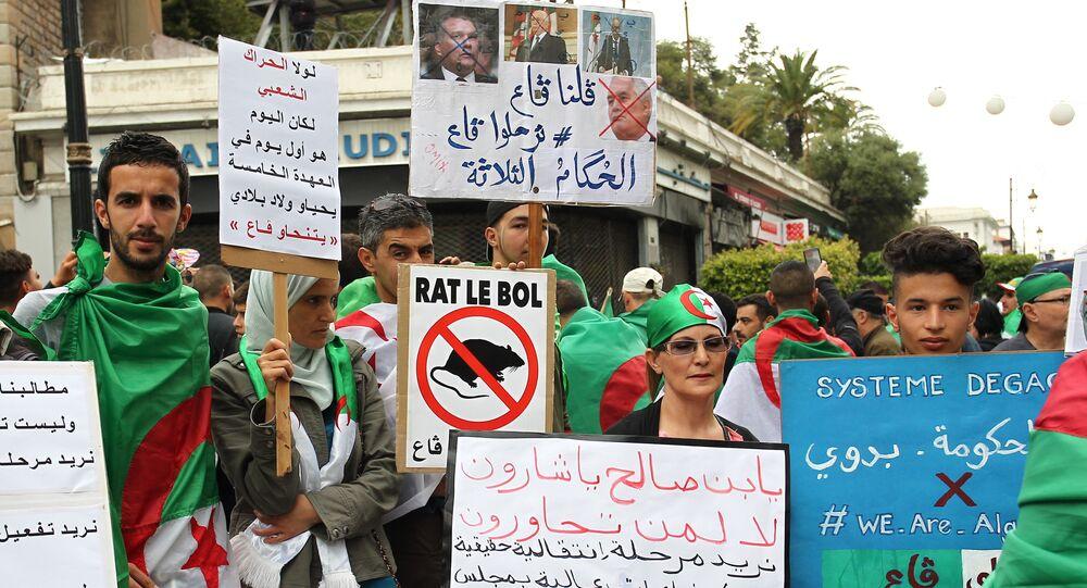 احتجاجات الجزائر في الجمعة التاسعة