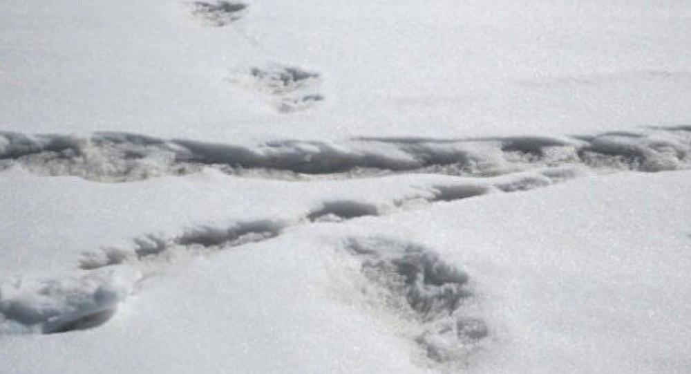 آثار أقدام رجل الثلج في جبال الهيمالايا