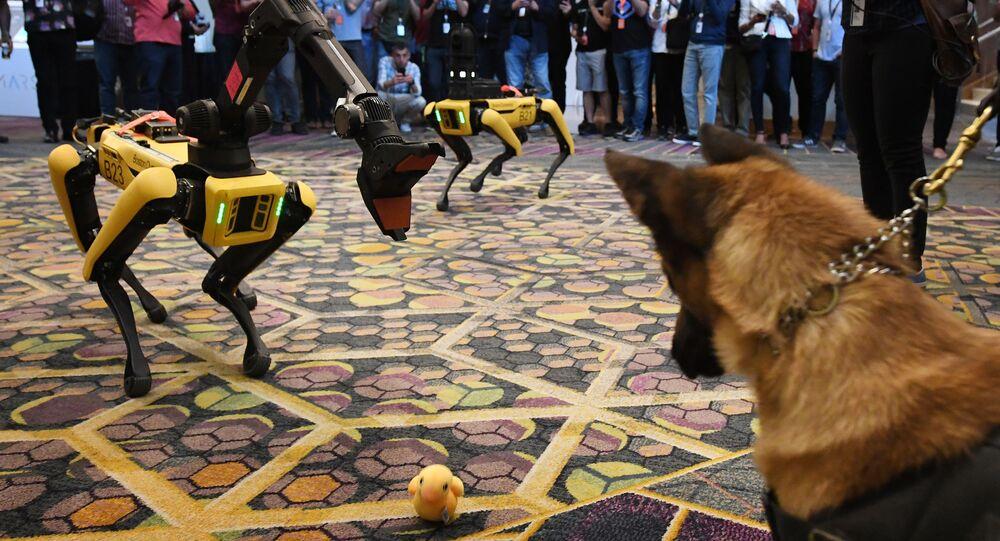 الكلب كي 9 والكلب الآلي سبوت (Spot ) أثناء مؤتمر صحفي Amazon Re:MARS، 4 يونيو/ حزيرام 2019