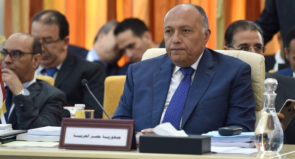 وزير الخارجية المصري سامح شكري، 29 مارس/ آذار 2019