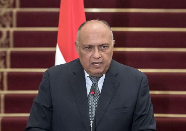 وزير الخارجية المصري سامح شكري، 5 مارس/ آذار 2019