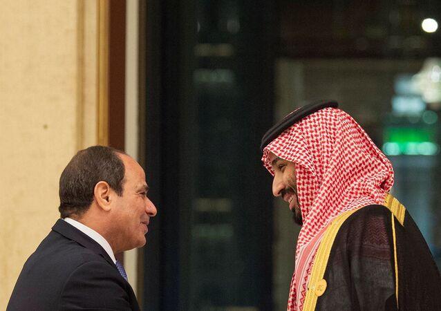 الرئيس عبد الفتاح السيسي يلتقي ولي العهد السعودي محمد بن سلمان في قمة العشرين