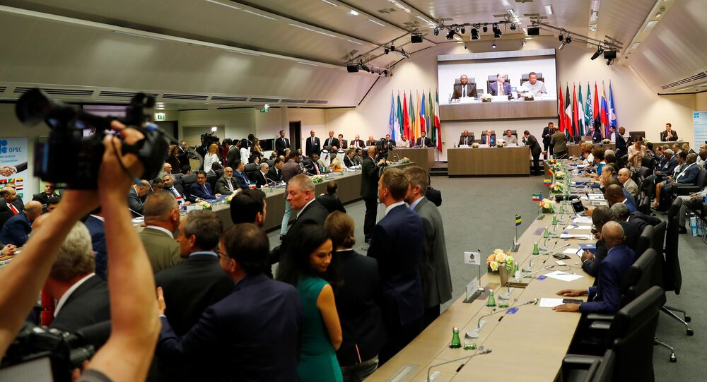 الصحفيون ينتظرون في بداية اجتماع أوبك في فيينا