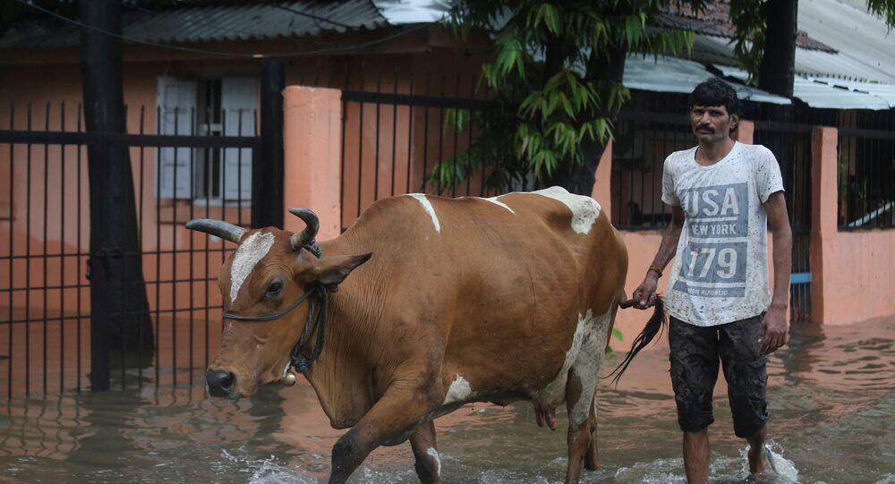 أمطار غزيرة في الهند