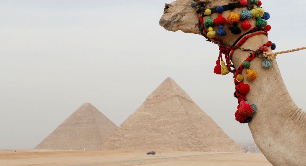 الأهرامات في مصر