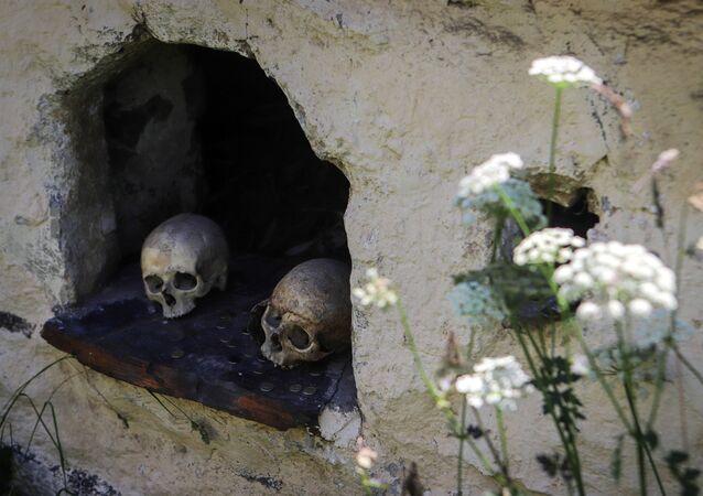 جماجم وعملات معدنية في مقبرة على أراضي مدينة الموتى في جمهورية أوسيتيا الشمالية الروسية - ألانيا