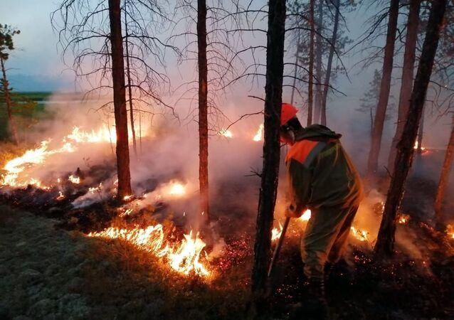 موظفو وزارة حماية الطبيعة في ياقوتيا يطفئون حرائق الغابات في ياقوتيا،  حرائق غابات