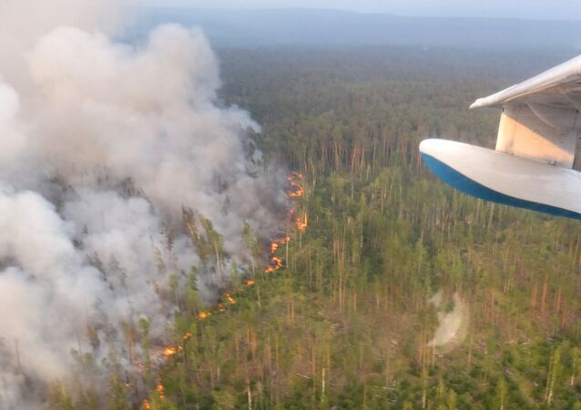 انتشار حرائق الغابات في حي بوغوتشانسك، منطقة كراسنويارسكي كراي، حرائق غابات