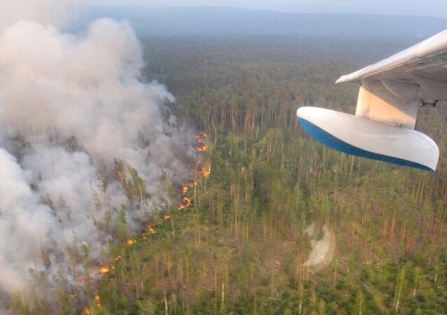 طيران الطوارئ الروسي يخمد حرائق 23 ألف هكتار خلال 24 ساعة