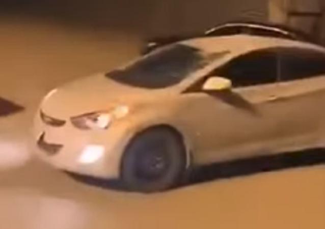 ناقة تصطدم بسيارة
