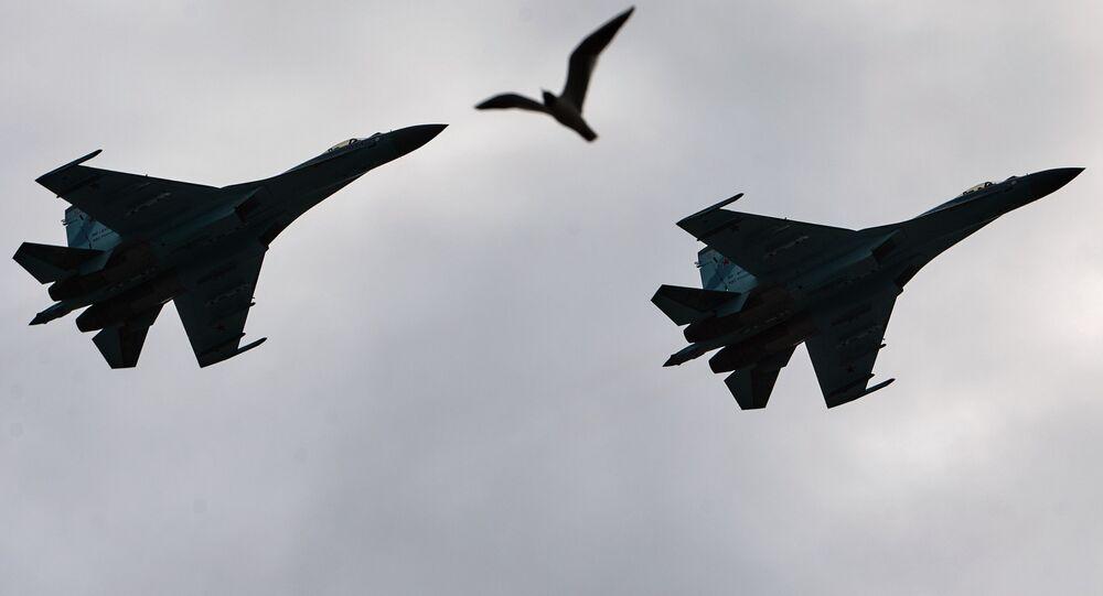 طائرات وطائر