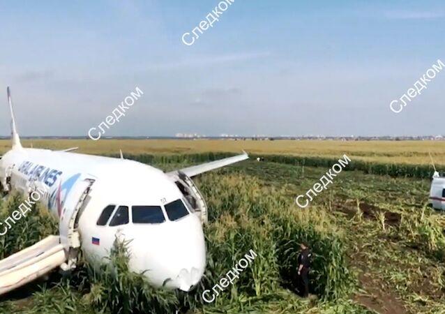 طائرة إيرباص A321 بعد اصطدام محركاتها بسرب طيور