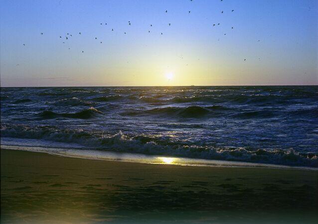ضفة بحر البلطيق