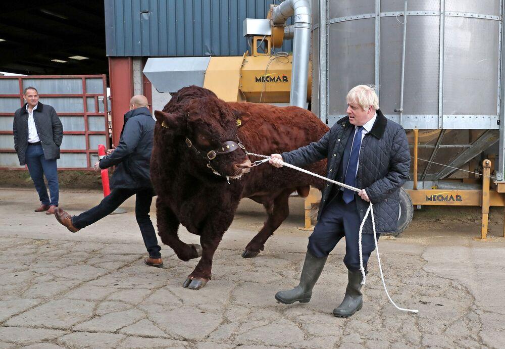 رئيس الوزراء البريطاني بوريس جونسون يزور مزرعة دارنفورد، إسكتلندا بريطانيا 6 سبتمبر 2019