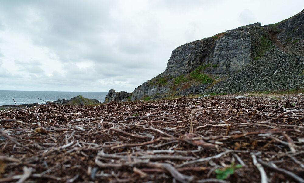 الصخور منطقة رأس كيكورسكي في شبه جزيرة ريباتشي في منطقة مورمانسك الروسية