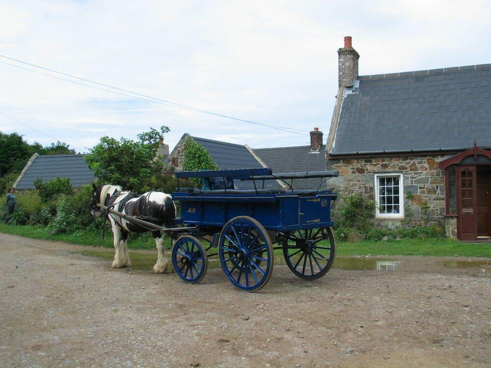 السيارات ممنوعة في جزيرة سارك البريطانية. يسافر سكانها بالدراجة والمركبات التي تجرها الخيول والعربات. يحق للمتقاعدين وذوي الاحتياجات الخاصة فقط استخدام وسائل النقل الآلية.