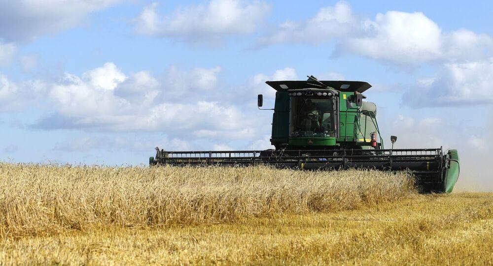 السعودية نيوز | لتغطية الاحتياج المحلي... السعودية تطرح مناقصة لاستيراد القمح