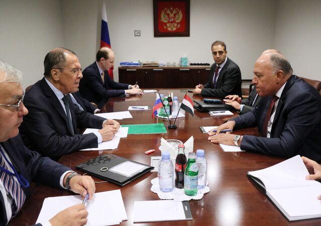 وزير الخارجية الروسي  سيرغي لافروف، مع نظيره المصري، سامح شكري