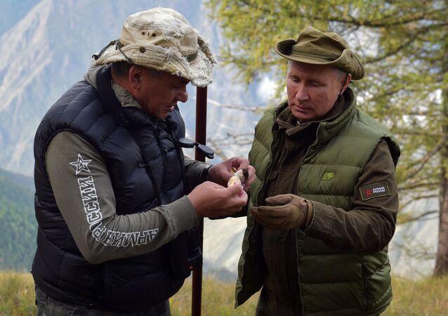 الرئيس الروسي فلاديمير بوتين يتنزه بصحبة وزير الدفاع سيرغي شويغو في سيبيريا، 7 أكتوبر 2019