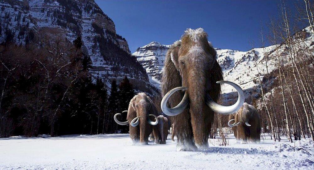 الماموثات التي عاشت خلال العصر الجليدي