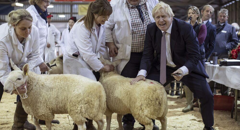 رئيس الوزراء البريطاني بوريس جونسون يزور معرض مقاطعة ويلز للماشية في لانيلفيلد، ويلز، 25 نوفمبر 2019