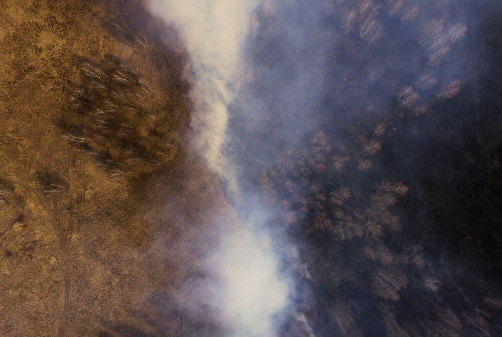 اشتعال العشب الجاف في حقل بمنطقة بيلوفسكي في منطقة كيميروفو بالقرب من الطريق السريع لينينسك-كوزنيتسك - نوفوكوزنيتسك، 12 أبريل 2019