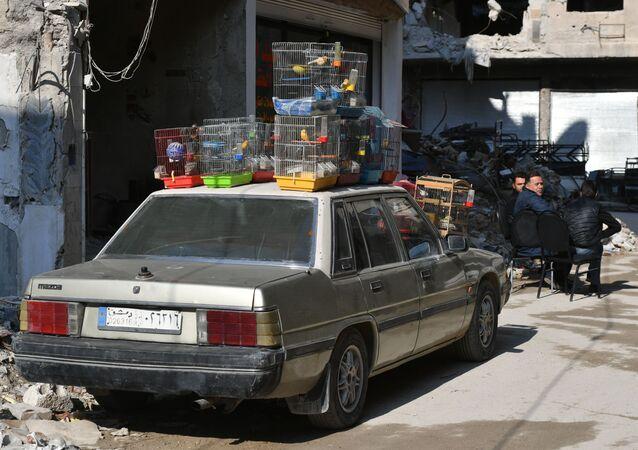 ريف دمشق 2019