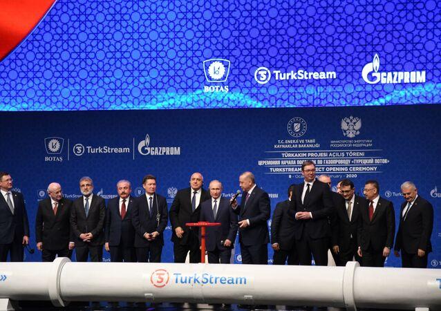 تدشين التيار التركي بحضور الرئيسين التركي والروسي