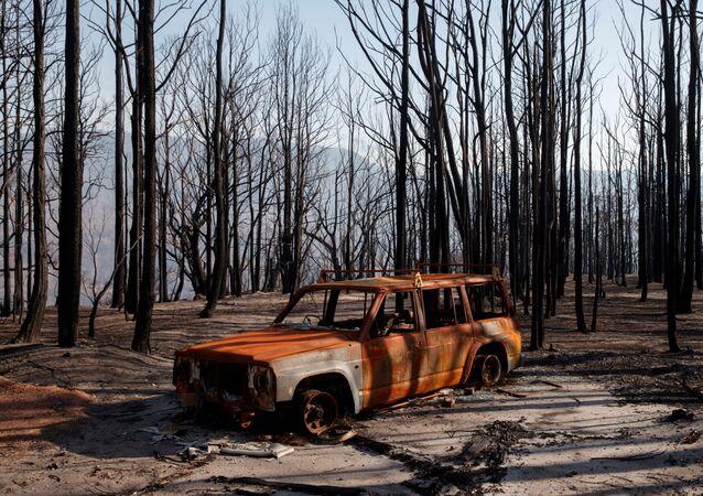 سيارة محترقة في وادي الكنغر بأستراليا بعد حرائق الغابات، 23 يناير 2020