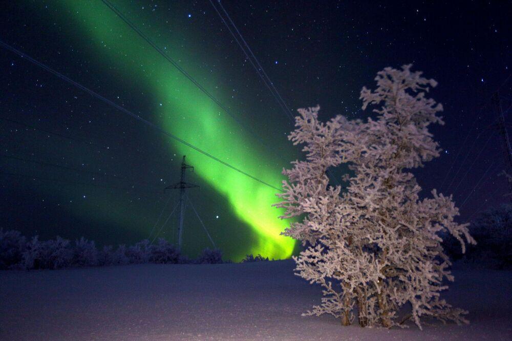 أضواء الشفق القطبي في منطقة مورمانسك الروسية، 29 يناير 2020
