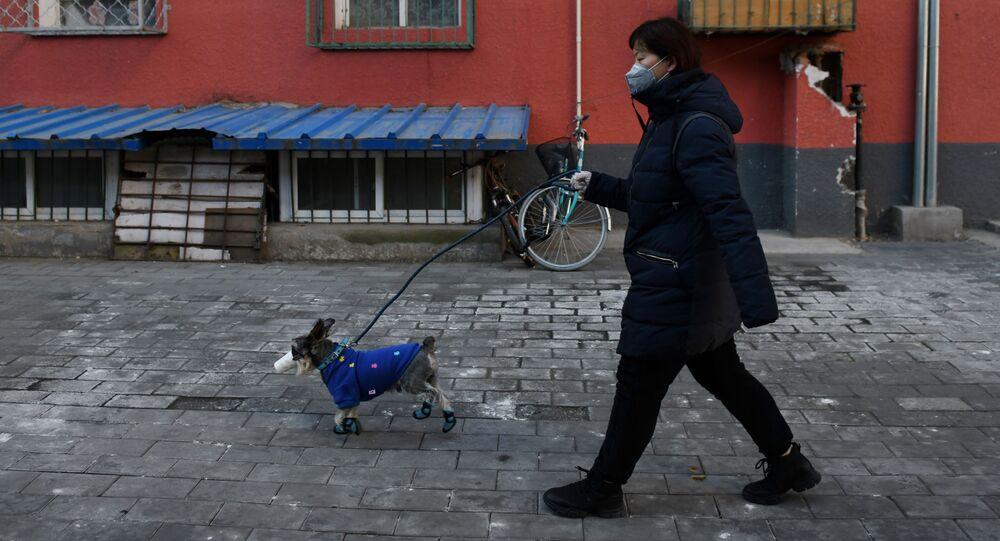 امرأة تسير في أحد شوارع بكين مع كلبها واضعا قناعا واقيا تحسبا من اصابته بفيروس كورونا في بكين، الصين 4 فبراير 2020