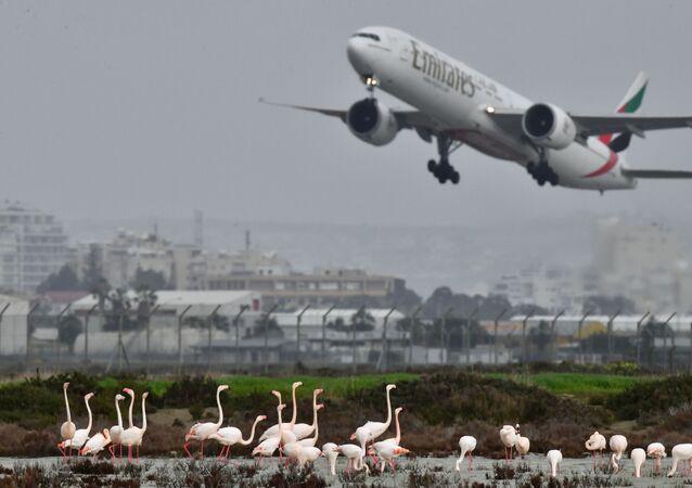 طائرة تابعة لشركة الإمارات للطيران في لارنكا، قبرص 6 فبراير 2020