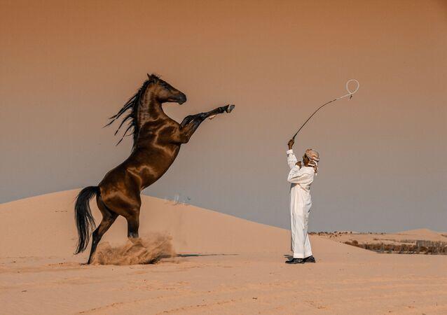 صورة بعنوان حركة الفرس في السعودية، للمصور عباس الخميس من السعودية، الحائزة على الجائزة الوطنية (السعودية) في المسابقة العالمية سوني للتصوير لعام 2020