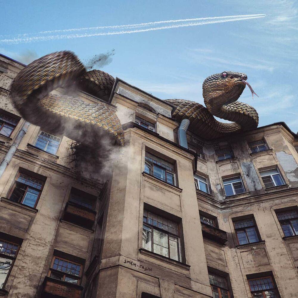 أفعى على مبنى في مدينة سان بطرسبرغ من عمل الفنان الروسي فاديم سولوفيوف