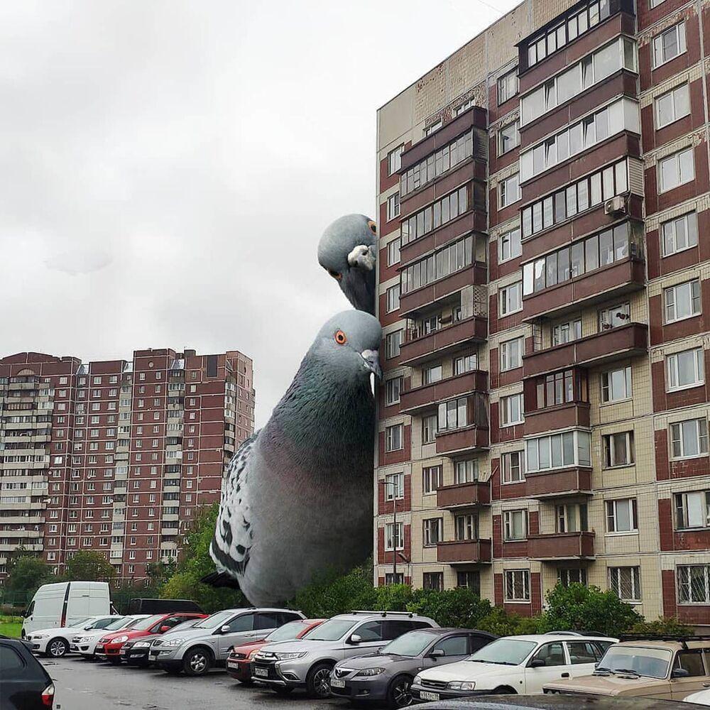 حمام ضخم مدينة سان بطرسبورغ من عمل الفنان فاديم سولوفيوف