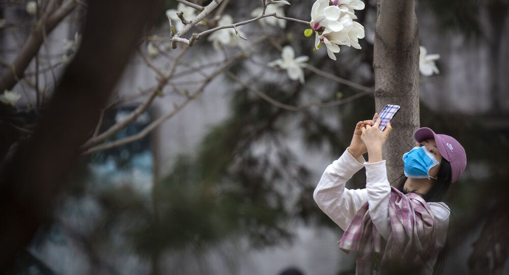 امرأة ترتدي قناع واقي تلتقط صورة لأزهار الكرز في حديقة بكين للحيوانات، بعد أن أعادت فتح المناطق الشكوفة أمام الجمهور، بعد حجر صحي في بكين، على خلفية تفشي الفيروس التاجي كورونا في الصين، 24 مارس 2020