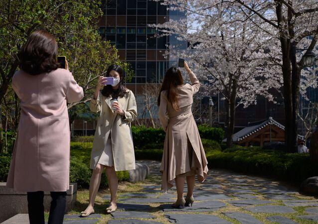 موظفات المكتب يرتدين أقنعة واقية وسط مخاوف بشأن انتشار الفيروس التاجي كورونا، يلتقطن صور للأشجار والأزهار خلال استراحة الغداء في وسط سئول، كوريا الجنوبية 31 مارس 2020