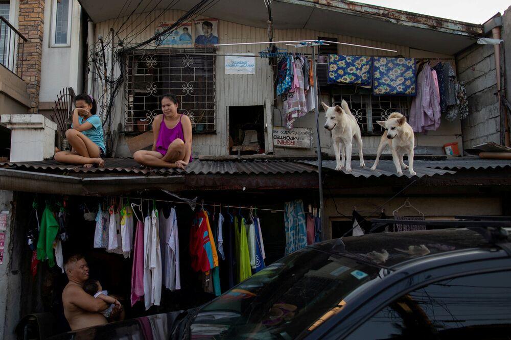 فتيات مع الكلاب على سطح منزل خلال العزلة الذاتية في الفلبين21 أبريل 2020