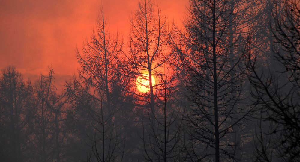 حرائق غابات في إقليم ما وراء البايكال، روسيا 23 أبريل 2020